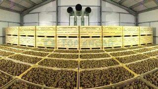 Строительство картофелехранилищ